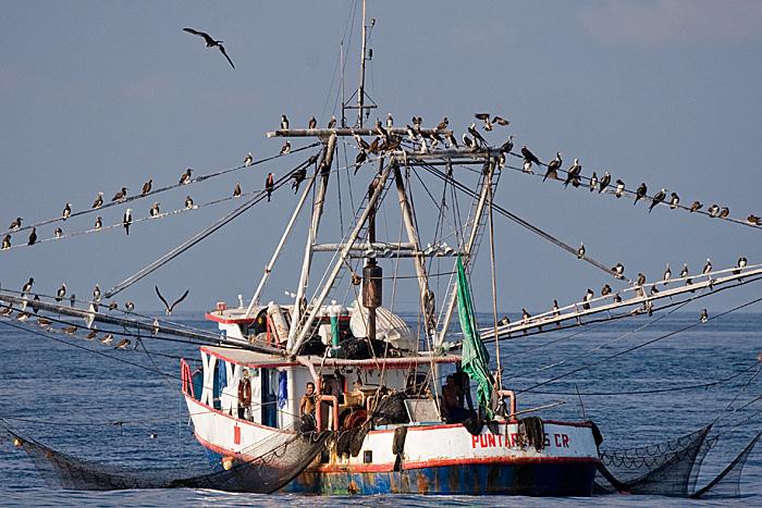 Thonier costaricain avec ses filets relevés Puntarenas (Costa-Rica)